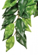 "Trixie Silk Hanging Plant Растение ""Ficus"" (шёлк) (20х30 см)"